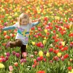 Plantar o bem é pouco, é preciso saber cultivar