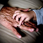 Avós: amor gratuito