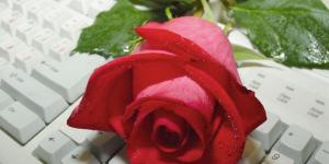 A maior declaração de amor já feita com uma rosa